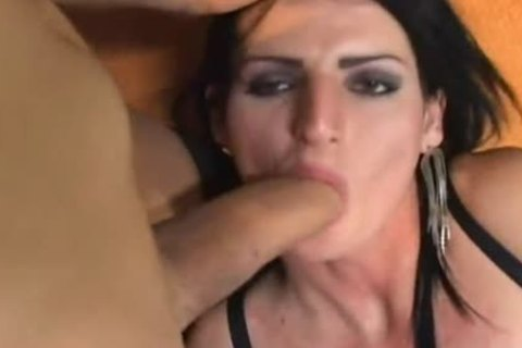 Transexual lesbian babes Playing