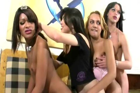 Four T-beauties In tasty Shecock engulfing An