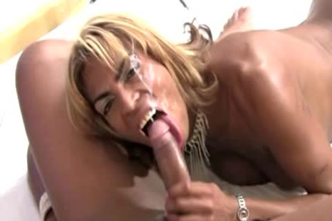 black shemales In wang engulfing And butthole drilling Foursome