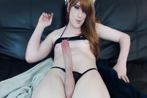 Mix Of t-girl Sex Movs By shemales fuck shemales