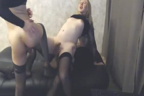 3 stunning lady-mans In stockings fuck Hard On cam